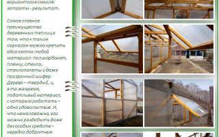 Как построить теплицу своими руками из дерева — опыт в чертежах и видео
