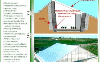 Зимняя теплица своими руками: обзор лучших технологий строительства