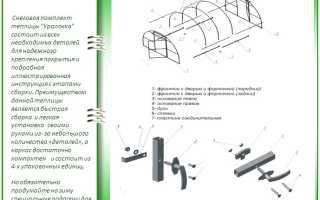 Теплица «Уралочка»: обзор характеристик и особенности сборки