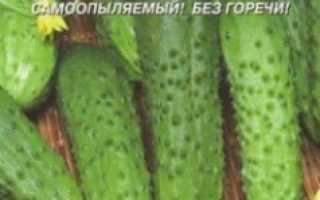 Какие сорта или гибриды огурцов и томатов можно посадить в пленочную обогреваемую теплицу для осенне-зимнего плодоношения