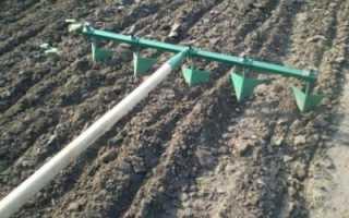 Методы посева семян на рассаду и разные способы маркировки посевов