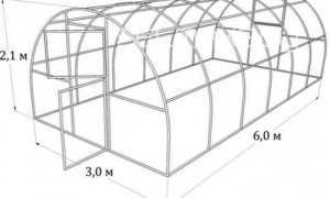 Как выбрать прочную теплицу из поликарбоната