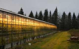Натриевые лампы высокого давления для освещения растений