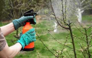 Средства для борьбы с вредителями и болезнями сада