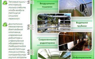 Отопление теплицы из поликарбоната: способы обустройства своими руками