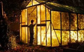 Освещение теплиц: устанавливаем светодиодные лампы для теплиц своими руками + видео