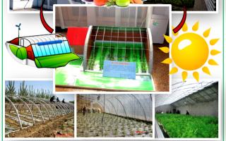 Солнечный вегетарий Иванова: опыт строительства своими руками