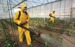 Пестициды Против Насекомых Для Сельского Хозяйства