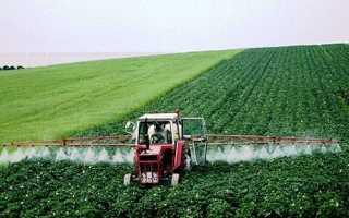 Как эффективно использовать гербициды от сорняков