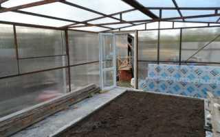 Как вырастить огурцы в теплице зимой: выбор сорта, посев семян, пересадка, уход