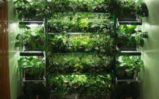 Стеллажи Для Овощей И Фруктов: Изготавливаем Самостоятельно
