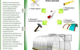 Сборка и установка теплицы из поликарбоната: как провести монтаж самому?