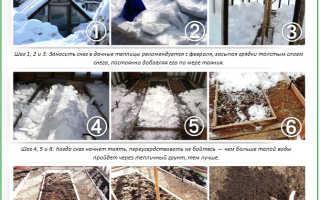 Обработка почвы в теплице весной: защита от вредителей и подготовка к высадке