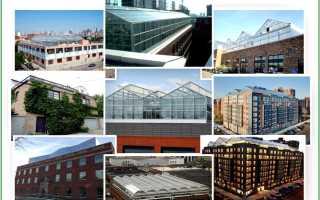 Теплица на крыше своими руками: особенности строительства