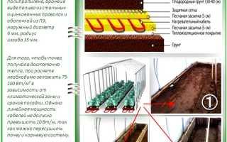 Как сделать теплые грядки в теплице весной: обзор 4х лучших способов