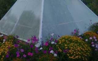 Пирамидальные теплицы и клумбы своими руками: из чего и как соорудить