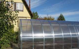 Грядки в теплице из поликарбоната: устройство и правильное расположение теплых грядок в парнике