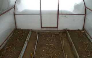 Обустройство теплицы из поликарбоната внутри: как обустроить стеллажные и грунтовые теплицы + фото