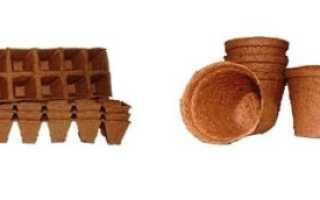 Кассеты для рассады: выбираем торфяные горшки, пакеты, ящики и стаканчики