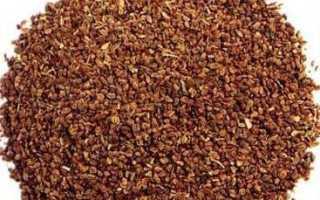 Корневой сельдерей: посадка и выращивание в открытом грунте