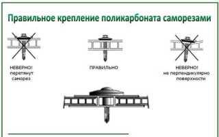 Крепление поликарбоната к каркасу теплицы: основные способы, инструкции по монтажу