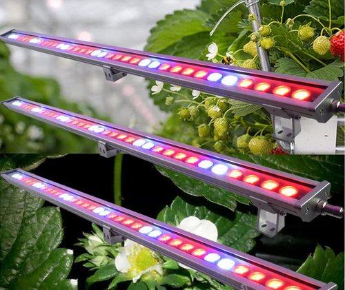 Выпускают панели светодиодов для боковой досветки растенийt