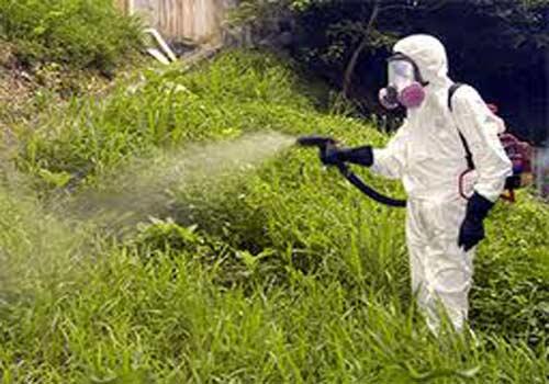 Обработка гербицидами должна проводится в спецодежде и респираторе