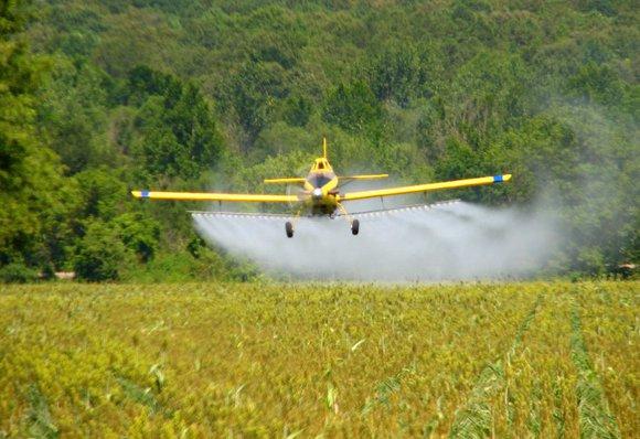 Использование гербицидов должно быть разумным
