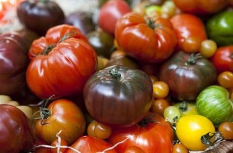 различные помидоры
