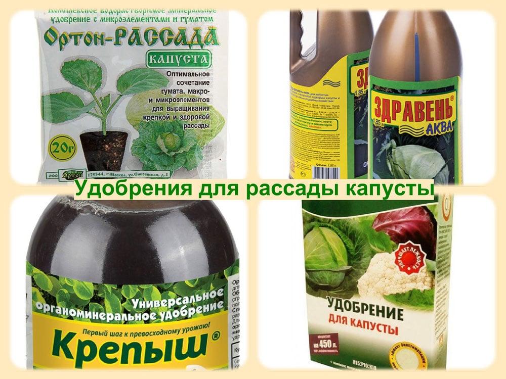 Удобрения для капусты