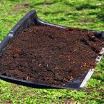 Азотосодержащие органические удобрения – это перегной и компост