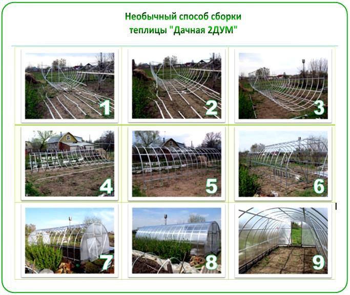 Сборка теплицы Дачная-2ДУМ