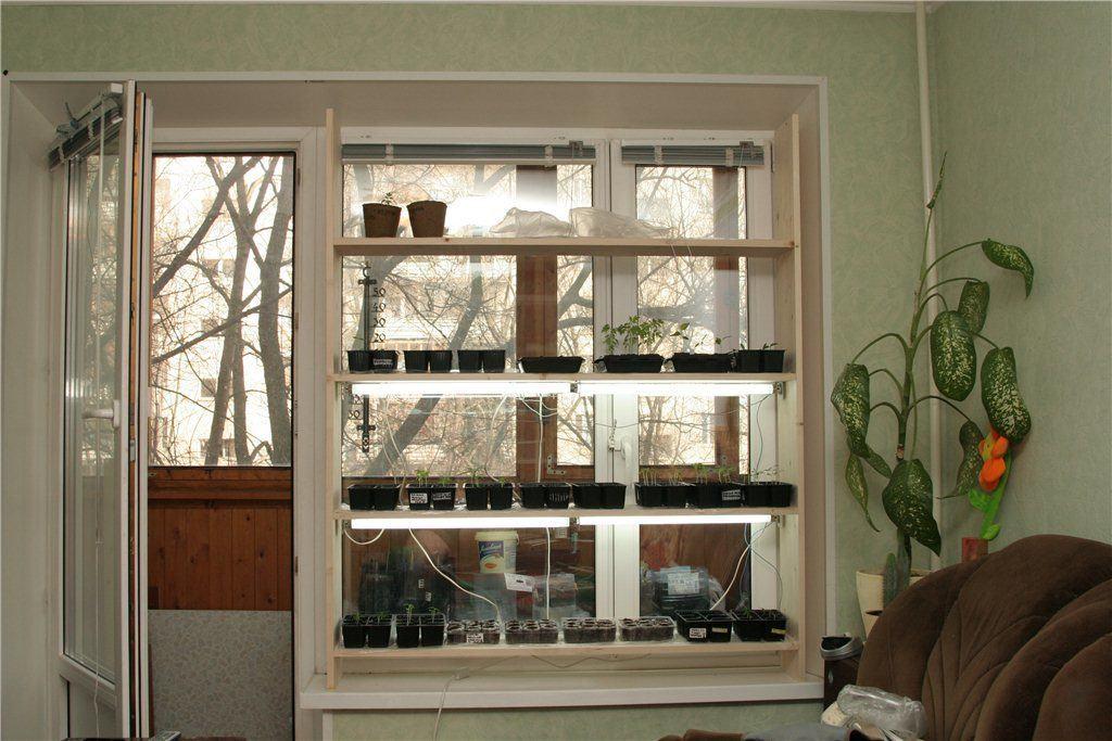Деревянный оконный стеллаж с лампами