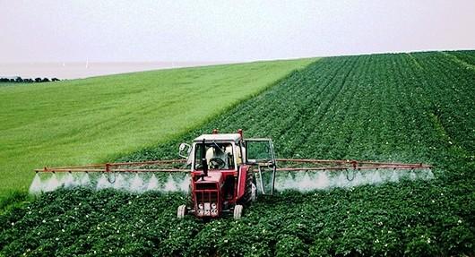 Фото с примером обработки земли средством