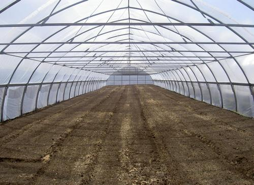 Почвогрунт в теплице очень важен для любых выращиваемых культур