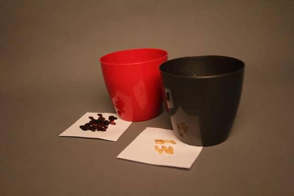 Стаканы для выращивания семян