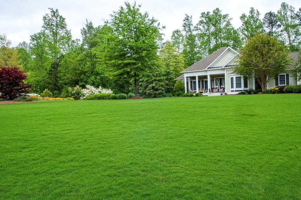 Идеальный газон в выращивание которого вложено много сил