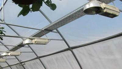 Источники искусственного освещения в теплице