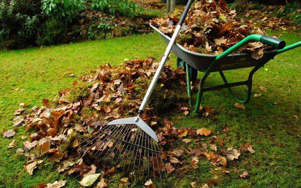 Уборка в саду листьев