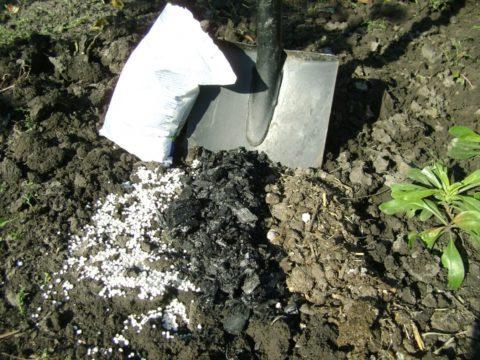 Минеральные удобрения желательно смешать с органическими