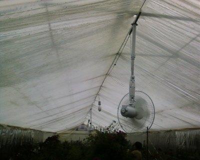 На этом фото внутренний слой покрытия – пленочный
