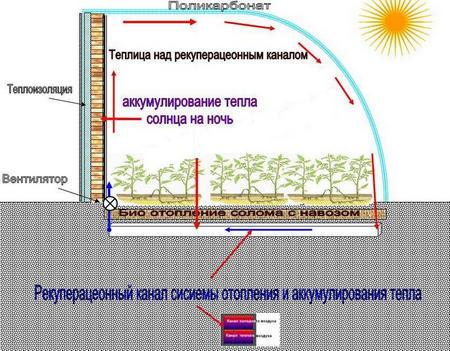 тепло для растений
