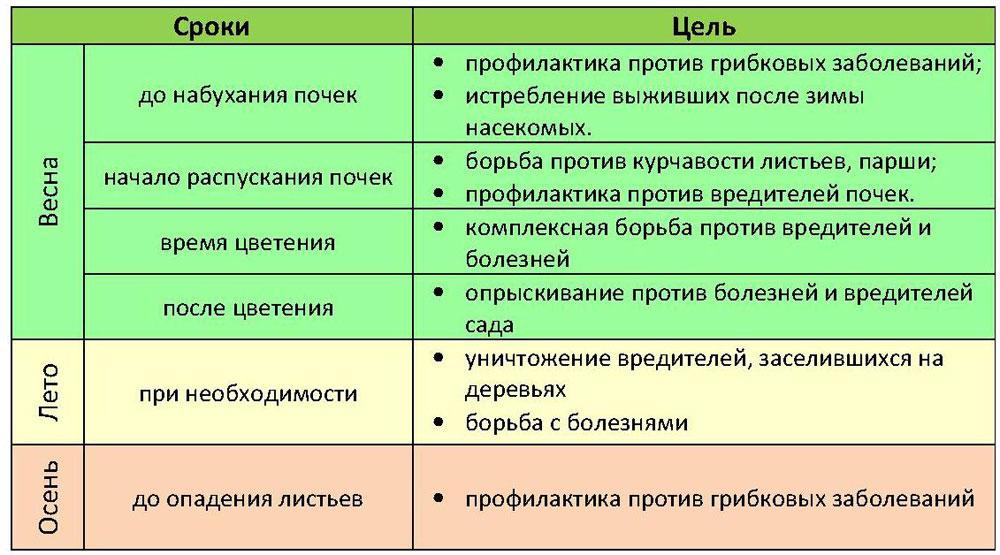 Таблица времени опрыскивания персика