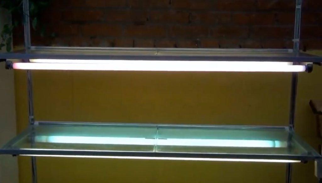 Распорный стеллаж для рассады с лампами и стеклянными полками