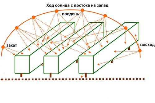 Самый доступный и бюджетный способ строительства, это тип парника в виде дуги, внешне похожий на тоннель.