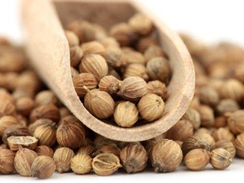 Семена кориандра