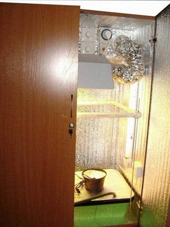 гроубокс внешне похож на шкаф