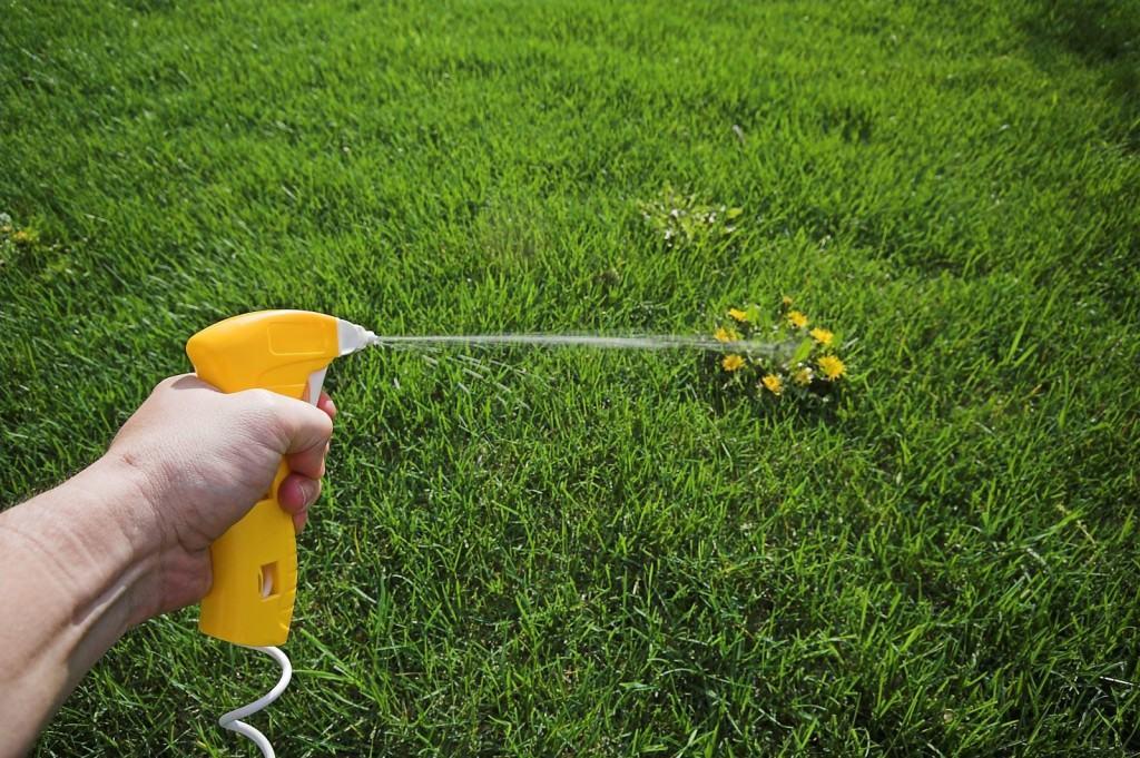 Точечная обработка сорняков гербицидами
