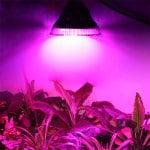 Фитолампа для растений