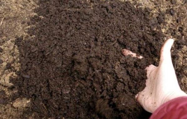 Почвосмесь для теплицы